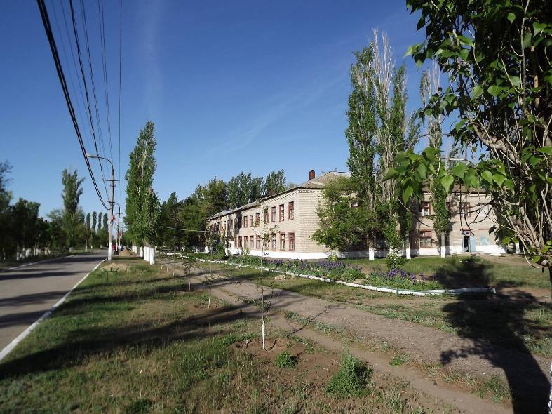 В психбольнице в Ложках под Волгоградом нашли нарушения
