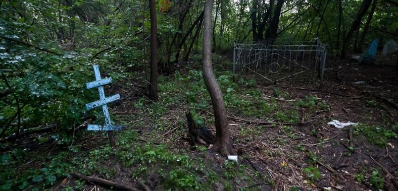 Волгоградская область вымирает со скоростью 10 тысяч человек в год