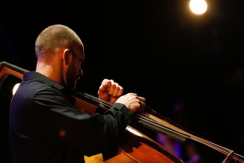 Контрабас и фортепиано: Царицынская опера в очередной раз удивляет волгоградцев
