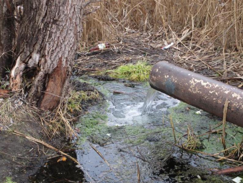 Первый канал увидел загрязнение реки Волги фекальными стоками в Волгоградской области