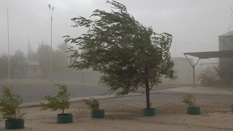 Штормовой ветер ожидается сегодня в Волгоградской области