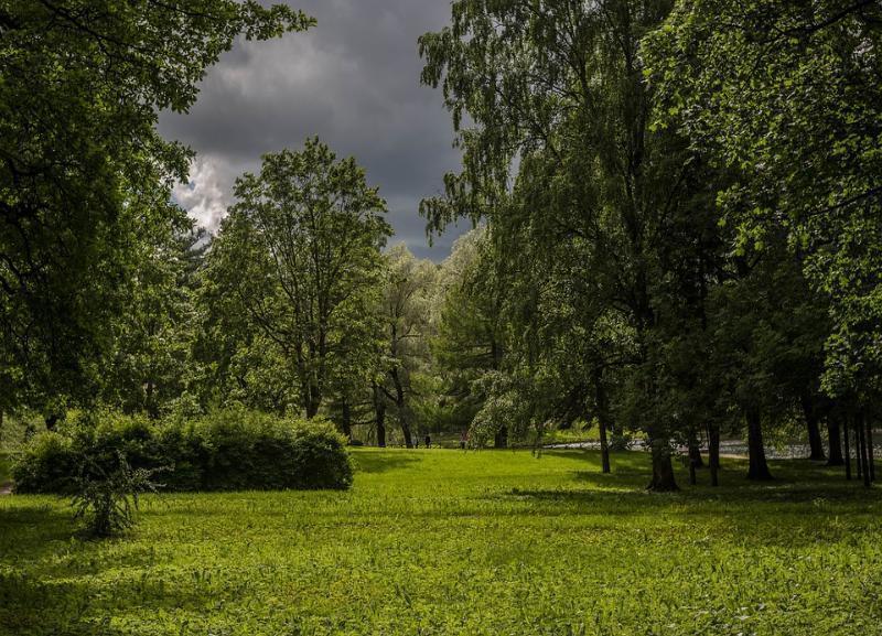 О дождливом и ветреном воскресенье говорят синоптики в Волгоградской области