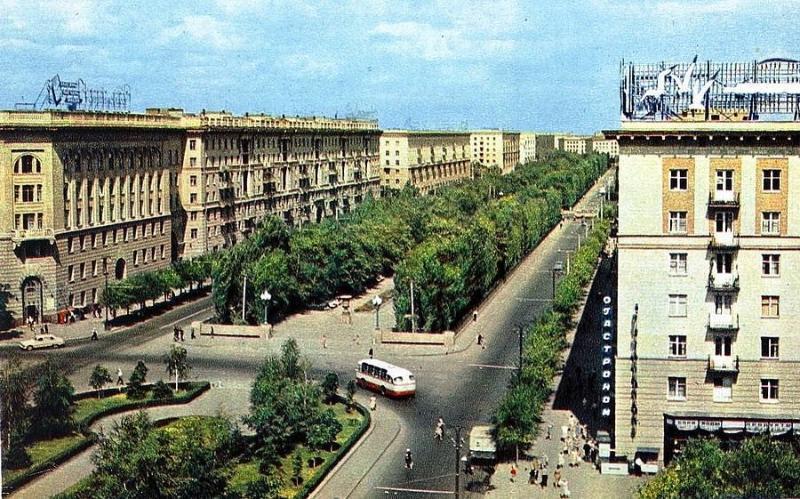 Календарь: 11 июля 1965 года – Волгограду официально вручили Золотую Звезду города – героя