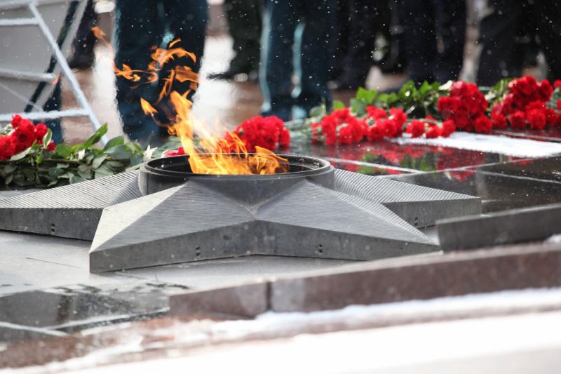 Военнослужащие грызли семечки и бросали их в Вечный огонь в Волгограде