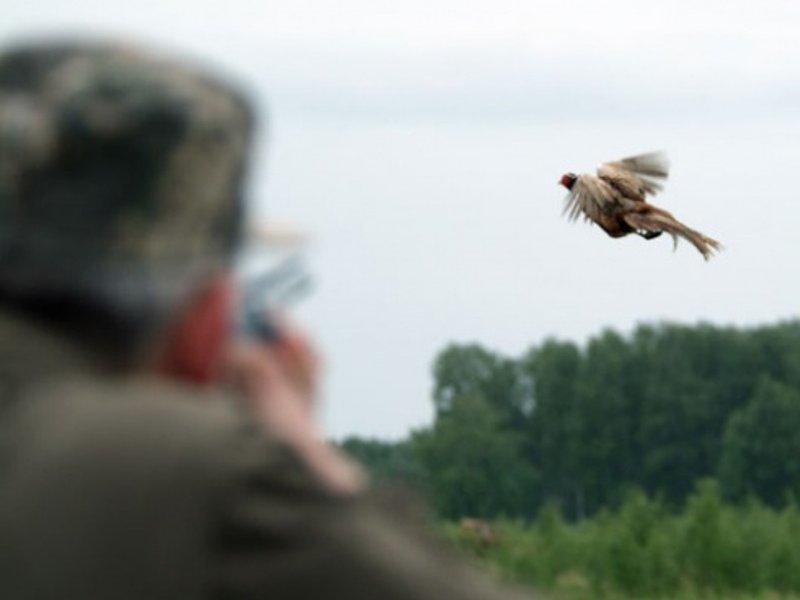 В Волгоградской области завершена охота на пернатую дичь