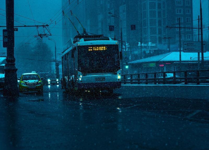 МУП «Метроэлектротранс» не смог обжаловать штраф за выдворенного из троллейбуса посреди моста школьника в Волгограде