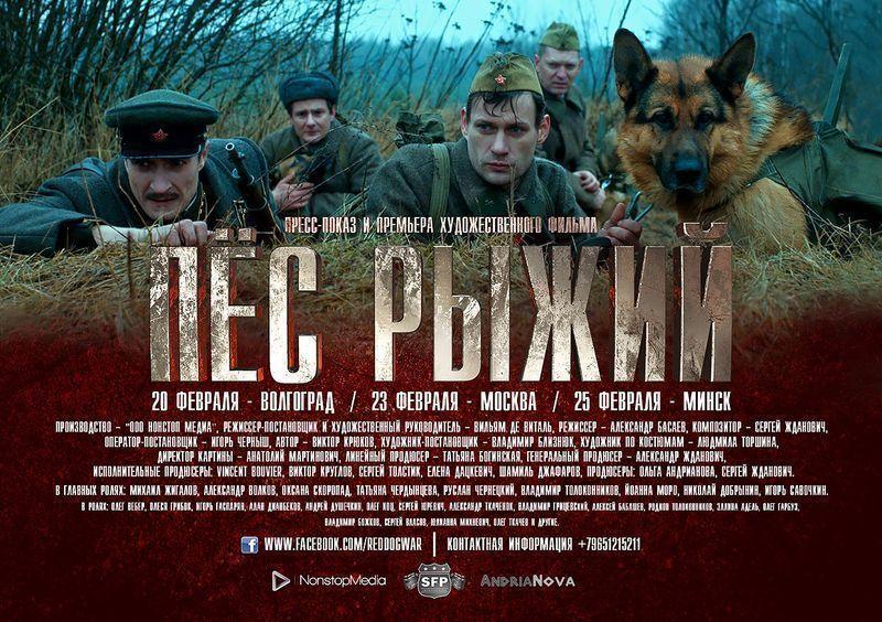 Волгоградцы самые первые увидят фильм особаках-истребителях