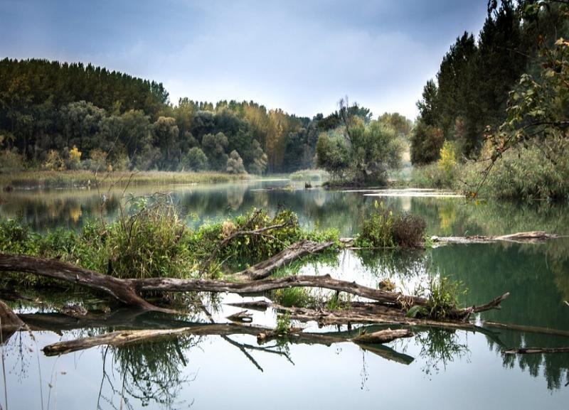 Житель Московской области трагически утонул в реке в Волгоградской области