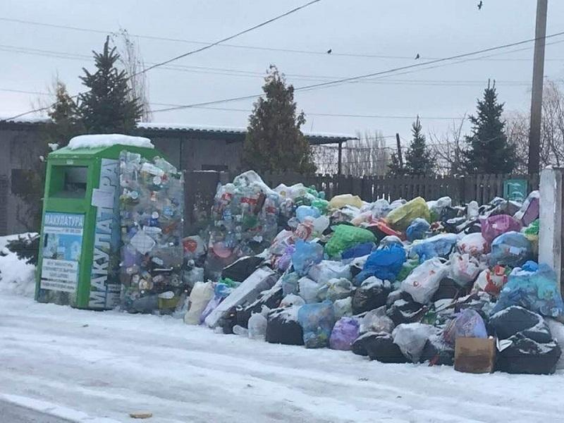 Везем все свой мусор в Латошинку, оттуда точно вывезут, - волгоградский общественник