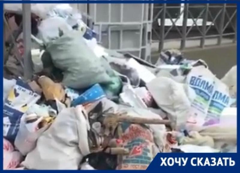 Жильцы элитной новостройки жалуются на зловонную кучу мусора