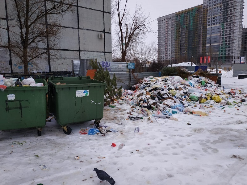 Прокуратура начала проверять волгоградский мусорный коллапс