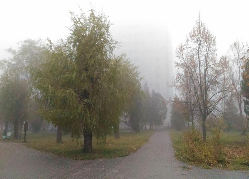 В начале недели тепло вернется в Волгоград