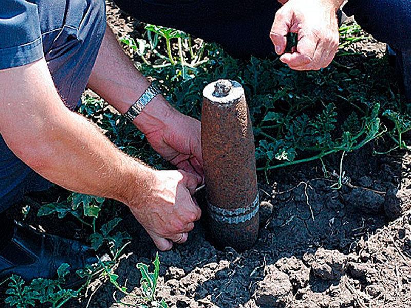 В волгограде рядом с детским садом найдена мина.