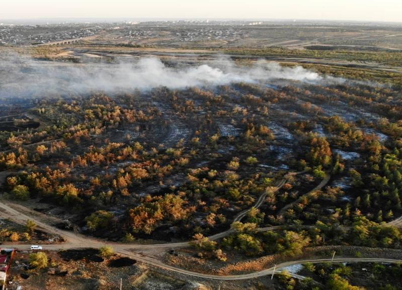 На 300 метров выше деревьев: масштабы пожара на Ангарском в Волгограде сняли на видео