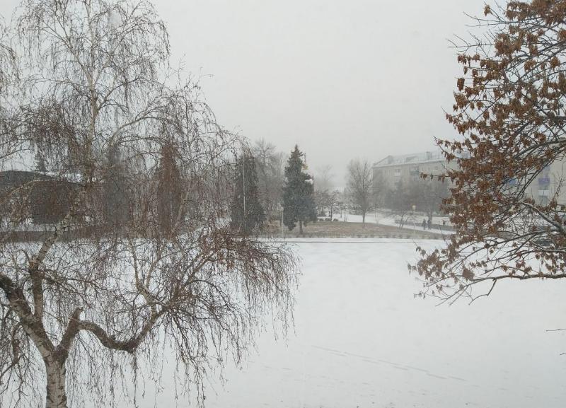 Север Волгоградской области засыпало снегом