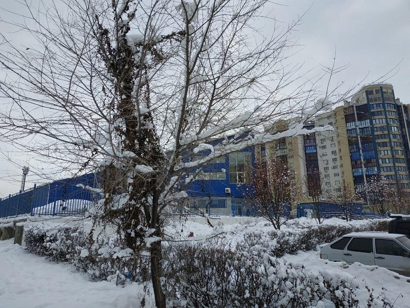 +2°С и дождь со снегом пообещали синоптики волгоградцам
