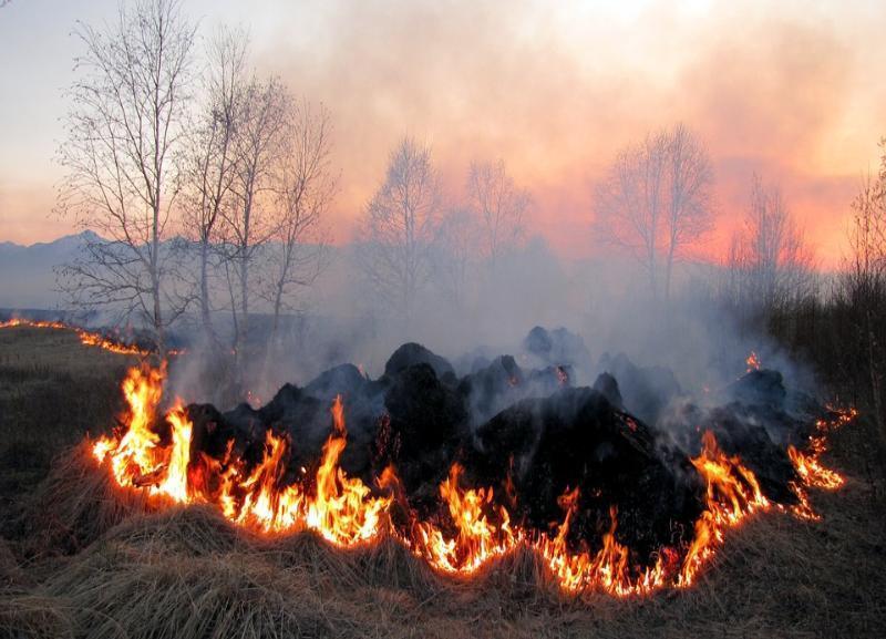 Прихожанка погибла после субботника в Волгоградской области