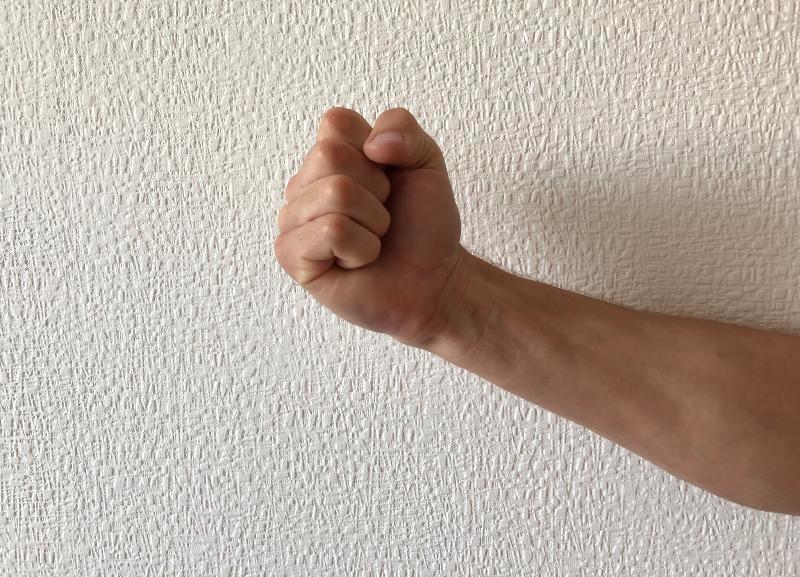 Волгоградец ударил кулаком в лицо полицейского за то, что на него составили административный протокол