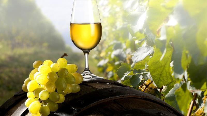 Здешним вином полагаются привлечь туристов врегион волгоградские власти