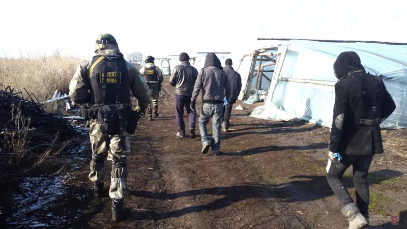 Спецназ нагрянул в теплицы Волгоградской области