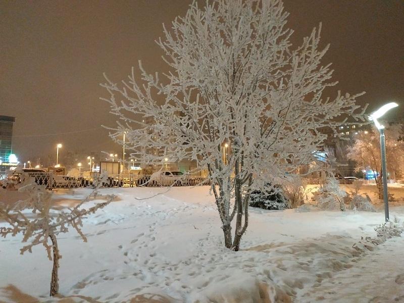 Мокрый снег и похолодание пообещали синоптики волгоградцам
