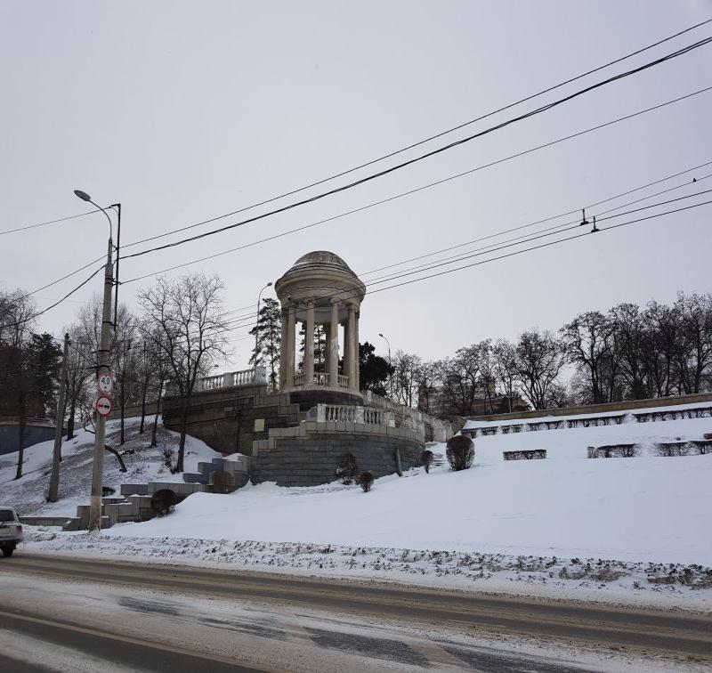 Варламов высмеял волгоградских чиновников из-за пересадки елей на набережной