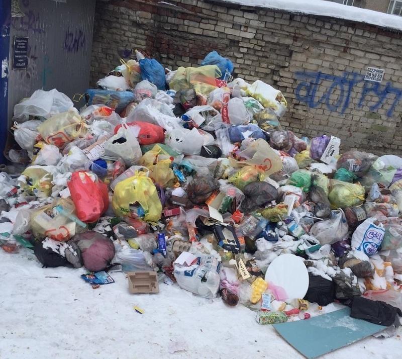 Волгоградцы показали на видео двор, в котором мусор последний раз вывозили в прошлом году