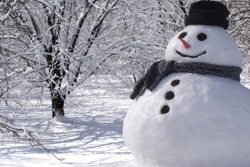 Вместе спотеплением вВолгоград придут гололед имокрый снег