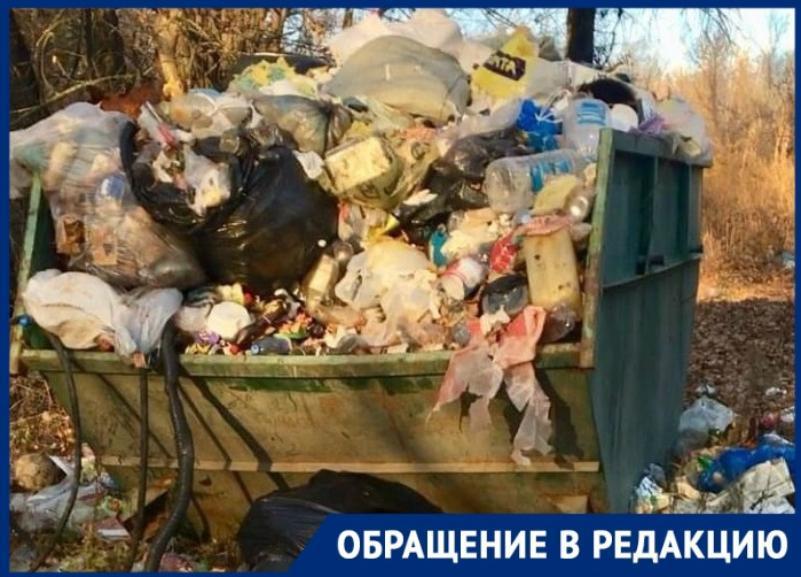 Невывозимая несколько месяцев гора мусора на Сарпинском в Волгограде попала на видео