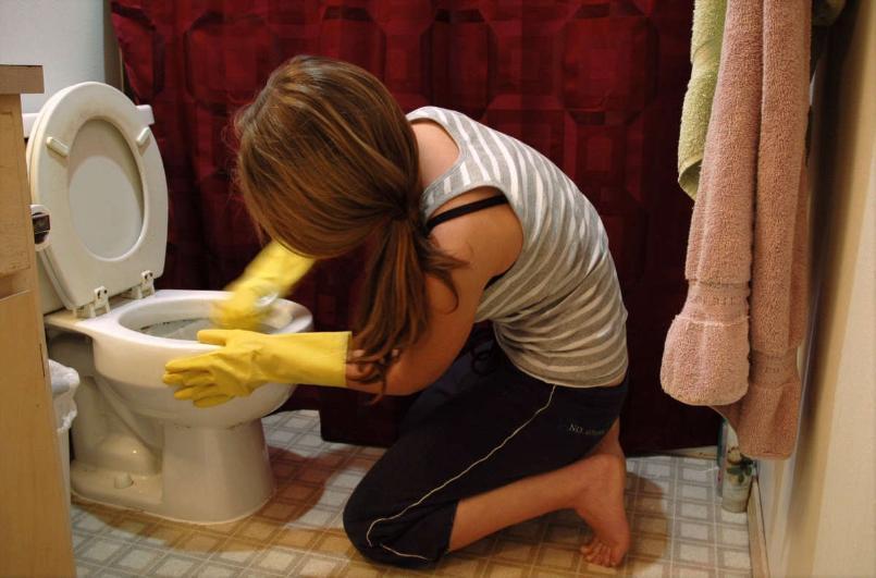 Пенсионный фонд  требует четыре раза в день чистить ершиками унитазы в их офисах в Волгограде
