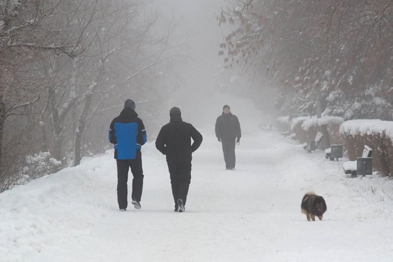 По улицам Волгограда сегодня ходить опасно для жизни