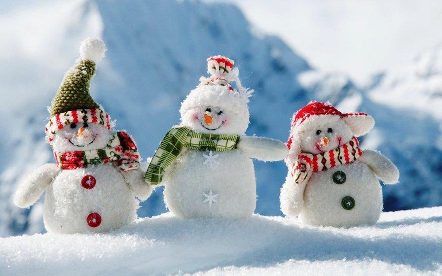 Снеговиков разных профессий покажут волгоградцам на новогодних праздниках