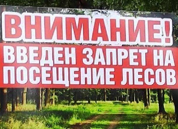 Волгоградцев оставили без шашлыков на природе до 12 октября