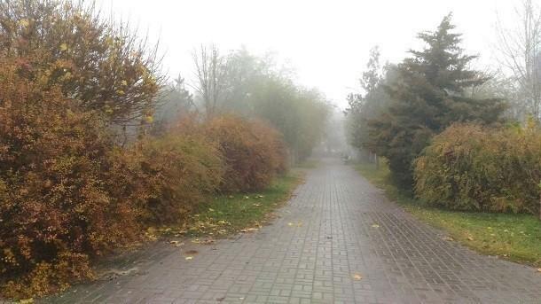 Морось и пасмурная погода не покидают Волгоград в середине декабря