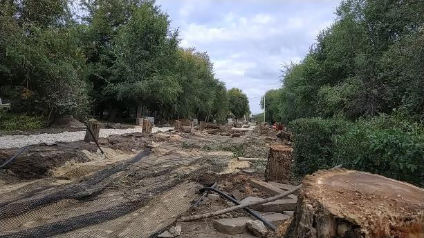 По приказу властей начато уничтожение аллеи на центральной набережной Волгограда
