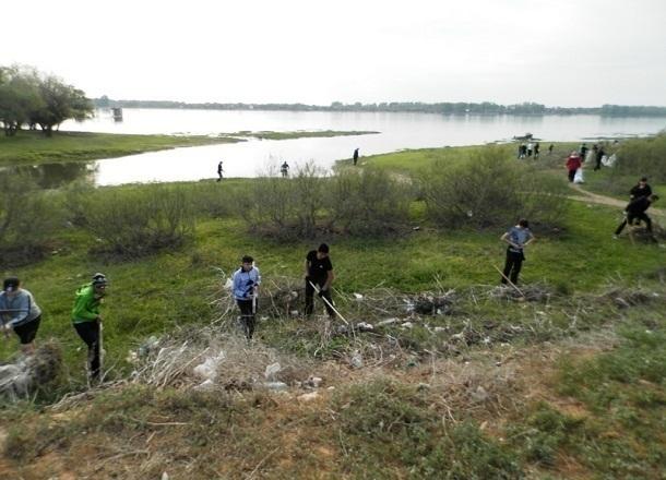 В Волгоградской области очистят от мусора леса и обочины дорог