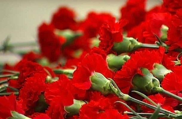Волгоградские чиновники закупают полторы тысячи гвоздик и 900 роз за счет бюджета