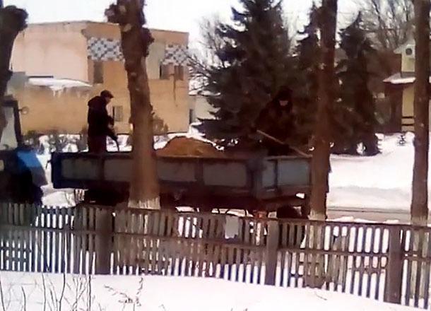 Неоднозначный способ обработки дорог сняли на видео в Волгоградской области