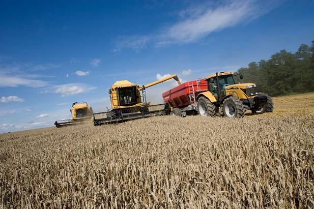 Депутат Госдумы заявил о гибели урожая в Волгоградской области