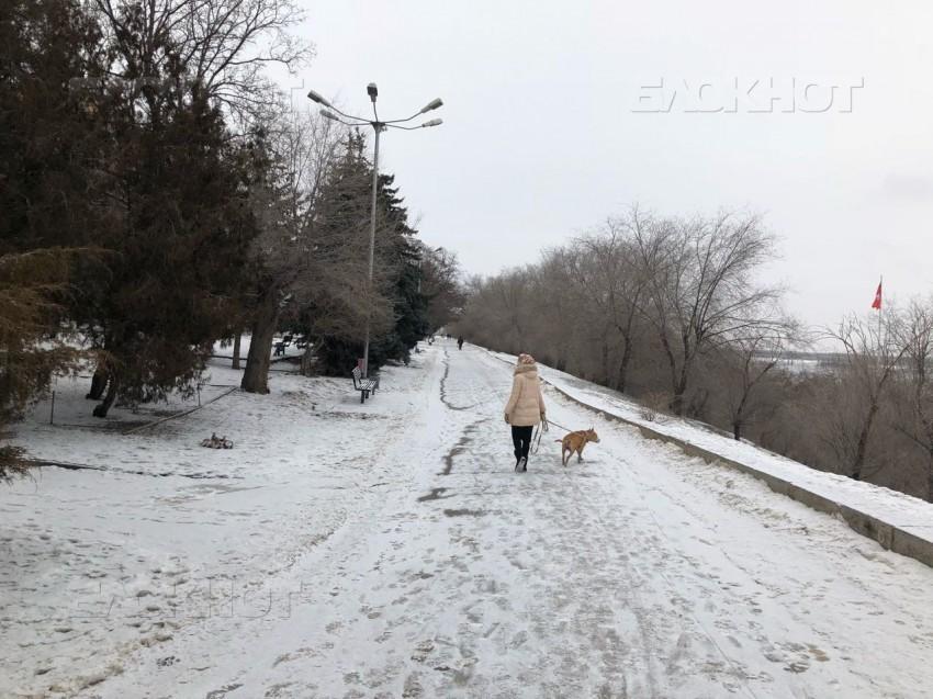 В Волгоградской области началось потепление