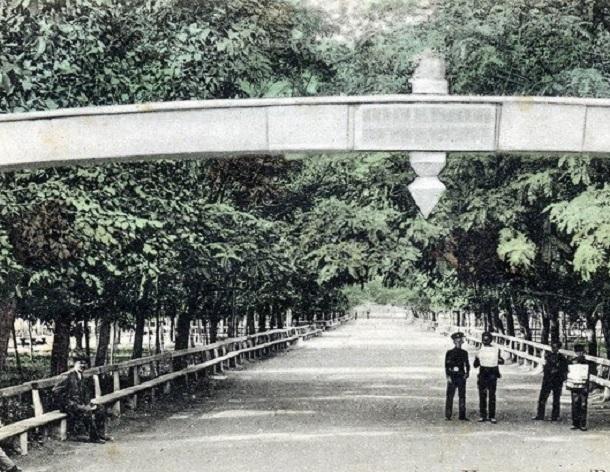 Первый парк Царицына сажали учащиеся во время уроков