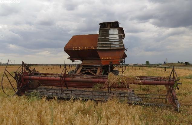 Медали и многомиллиардные инвестиции прошли мимо аграриев Волгоградской области на выставке в Москве