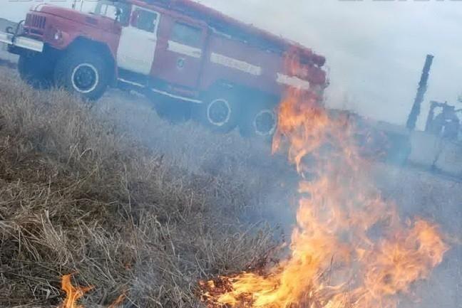 Во время пожара под угрозой оказалось детское футбольное поле в Волгограде