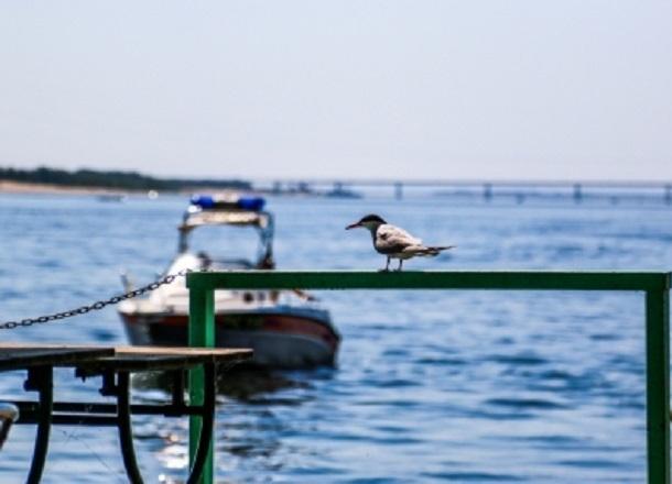 В Волгограде перекрыли движение катерам по Волге до весны