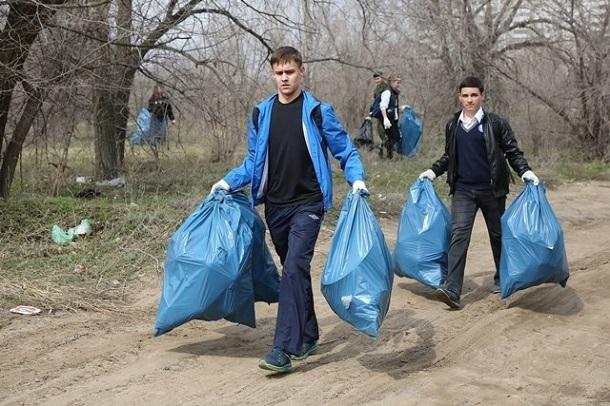 Волгоградские бюджетники будут собирать листву и белить деревья