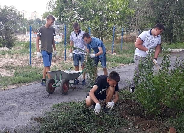 3 тысячи школьников Волгоградской области отправились поднимать «целину» этим летом