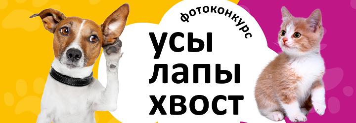 Конкурс-животных_720х250.jpg