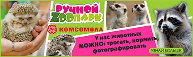 ruchnoi-zoo-385x115.jpg