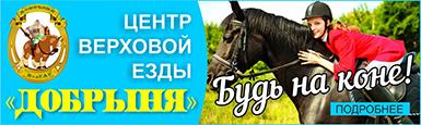 dobrinya-385x115.jpg